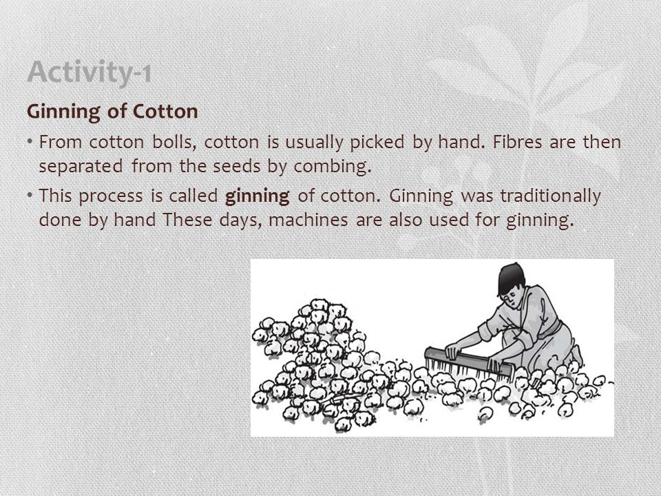 Activity-1 Ginning of Cotton