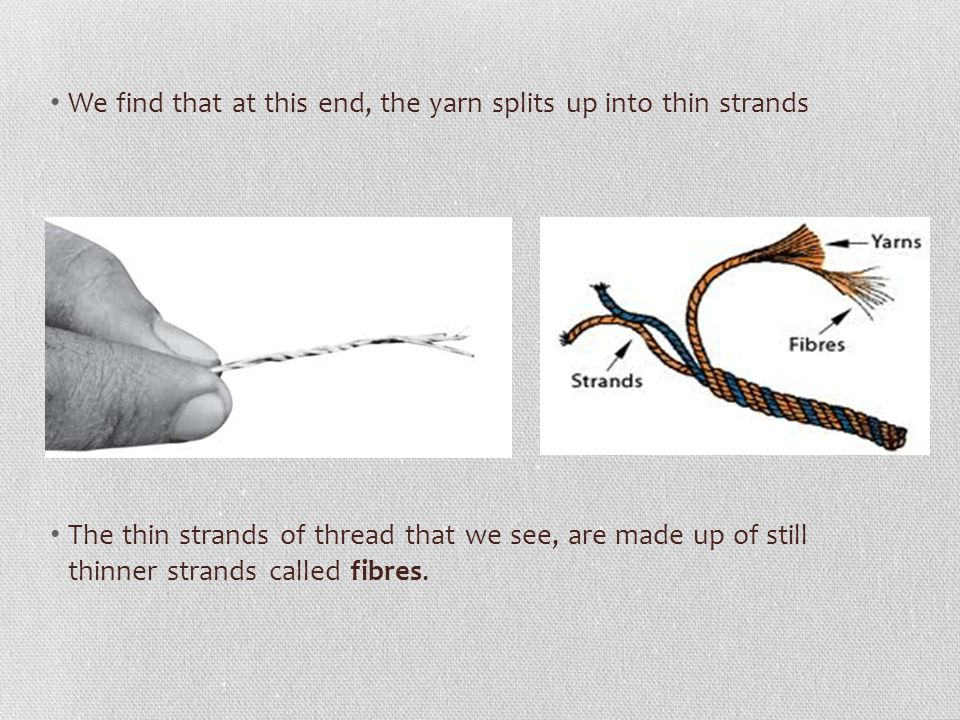 We find that at this end, the yarn splits up into thin strands
