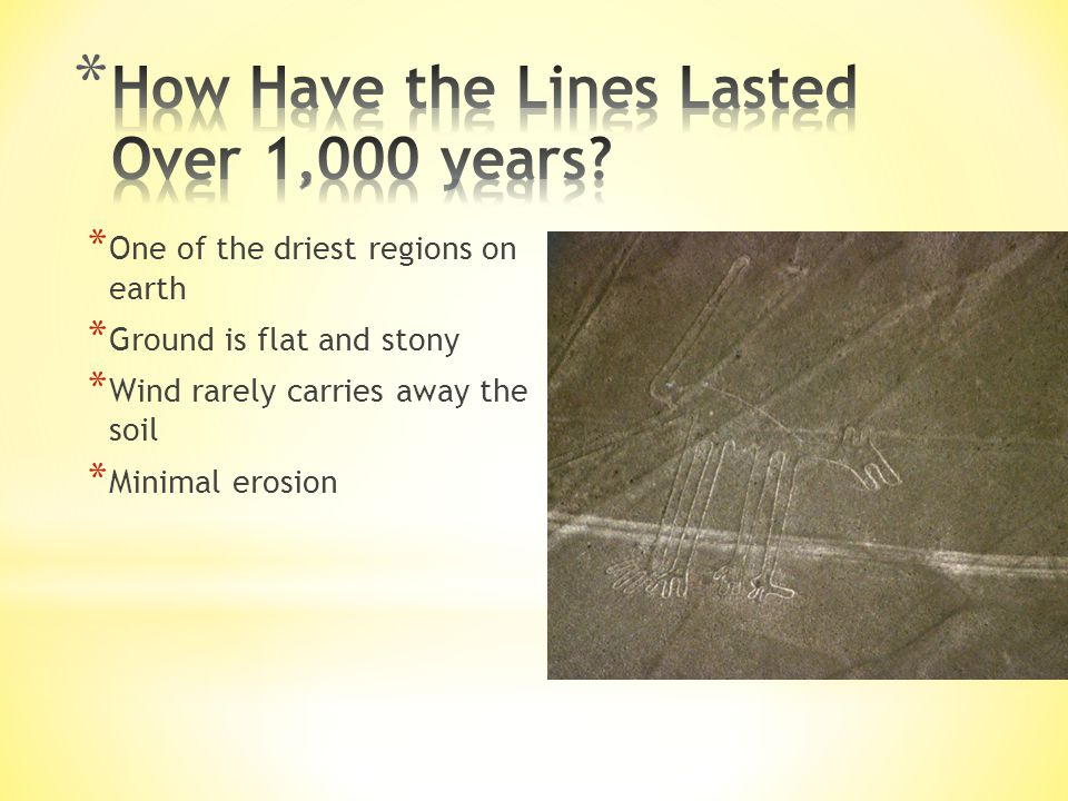 How Have the Lines Lasted Over 1,000 years