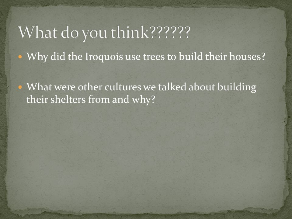What do you think Why did the Iroquois use trees to build their houses