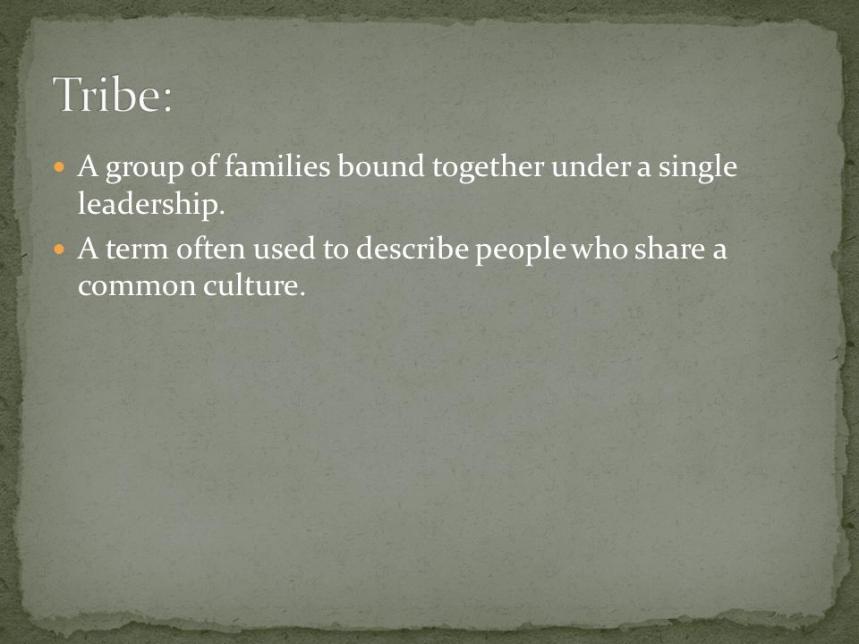 Tribe: A group of families bound together under a single leadership.