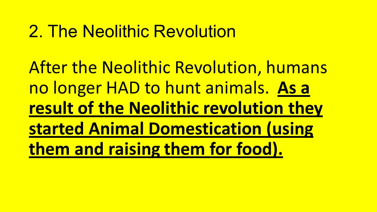 after the neolithic revolution The farming revolution taking root around 12,000 years ago, agriculture triggered such a change in society and the way in which people lived that its development has been dubbed the neolithic revolution.