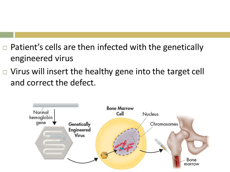 Patient's cells are then infected with the genetically engineered virus