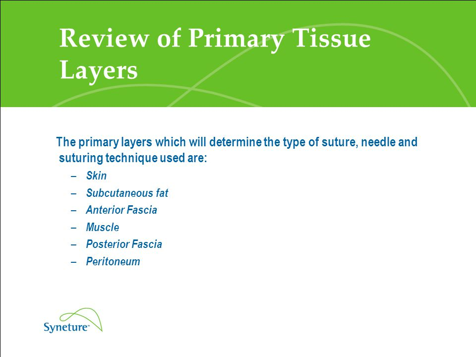 Review of Primary Tissue Layers