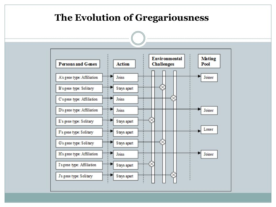 The Evolution of Gregariousness