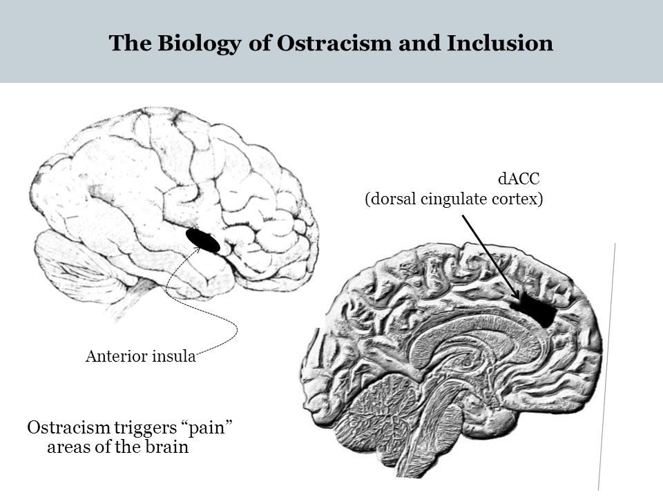 The Biology of Ostracism and Inclusion