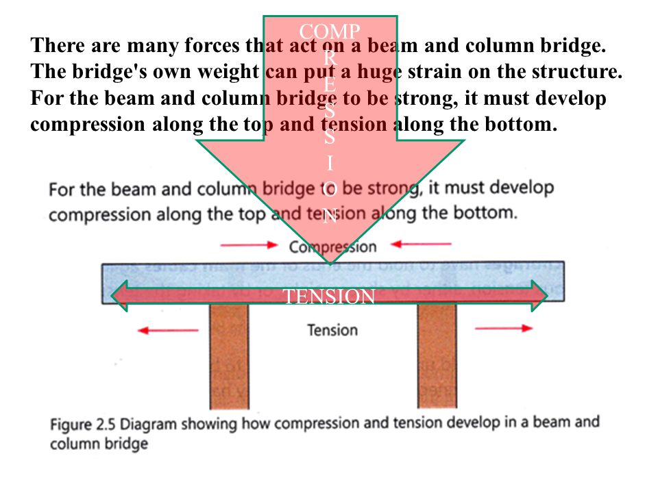 COMP R. E. S. I. O. N. There are many forces that act on a beam and column bridge.