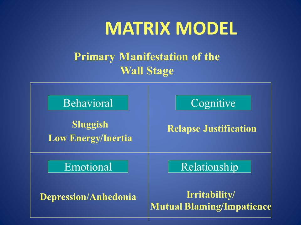 MATRIX MODEL Primary Manifestation of the Wall Stage Behavioral
