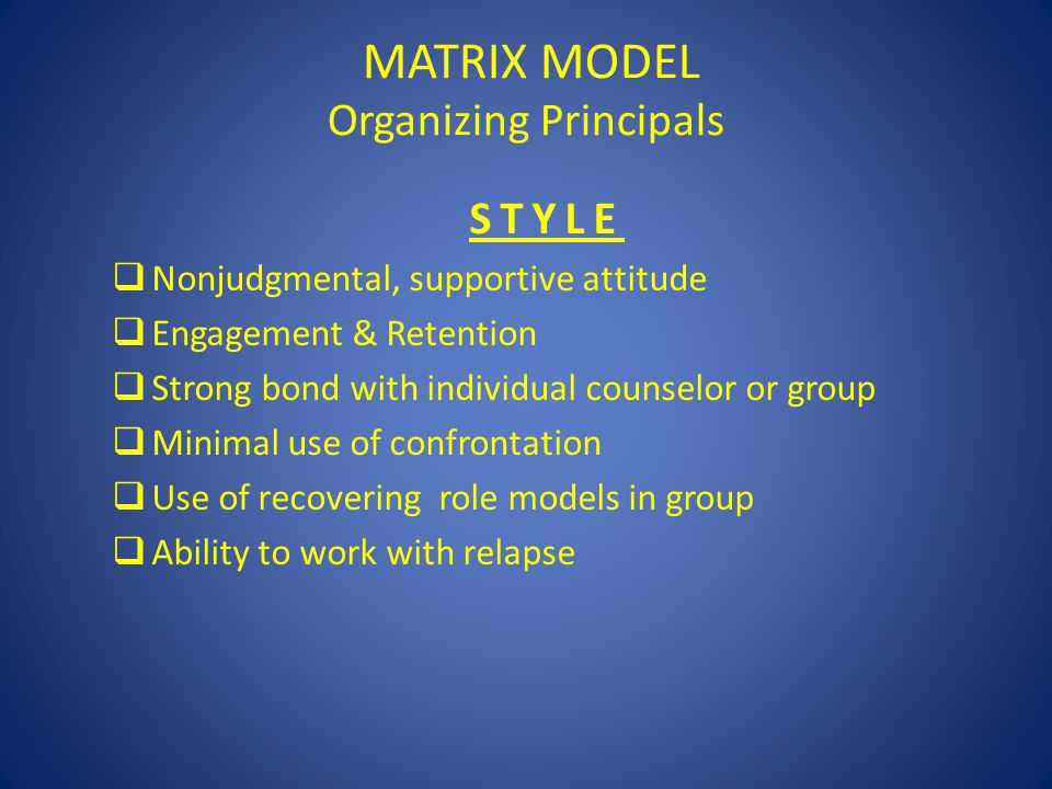 MATRIX MODEL Organizing Principals