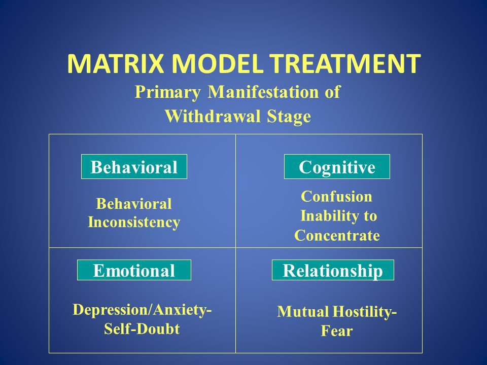 MATRIX MODEL TREATMENT