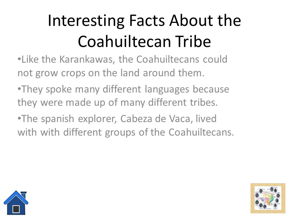 Interesting Facts About the Coahuiltecan Tribe