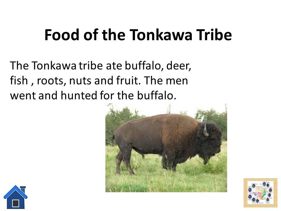 Food of the Tonkawa Tribe