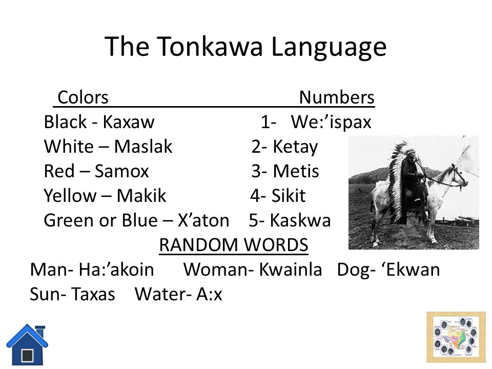 The Tonkawa Language