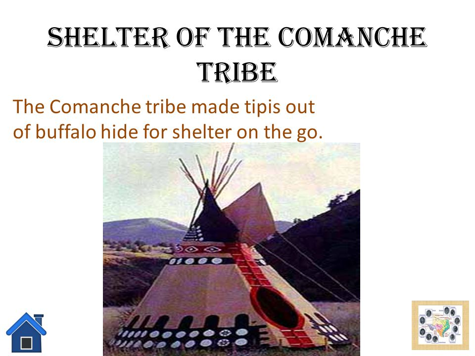 Shelter of the Comanche Tribe