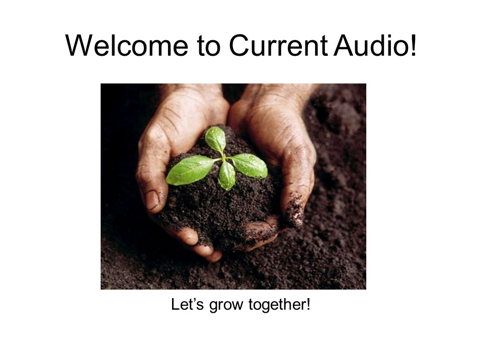 Welcome to Current Audio!