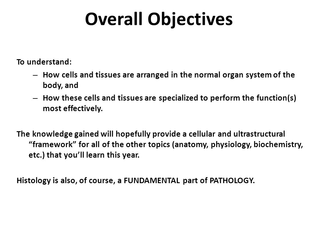 Overall Objectives To understand: