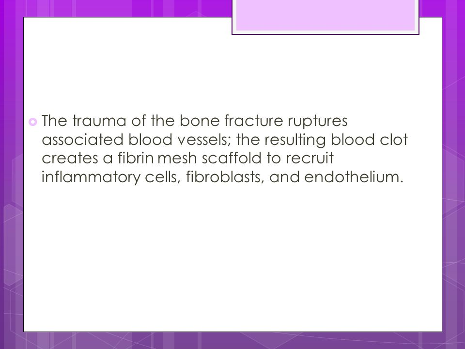 The trauma of the bone fracture ruptures associated blood vessels; the resulting blood clot creates a fibrin mesh scaffold to recruit inflammatory cells, fibroblasts, and endothelium.
