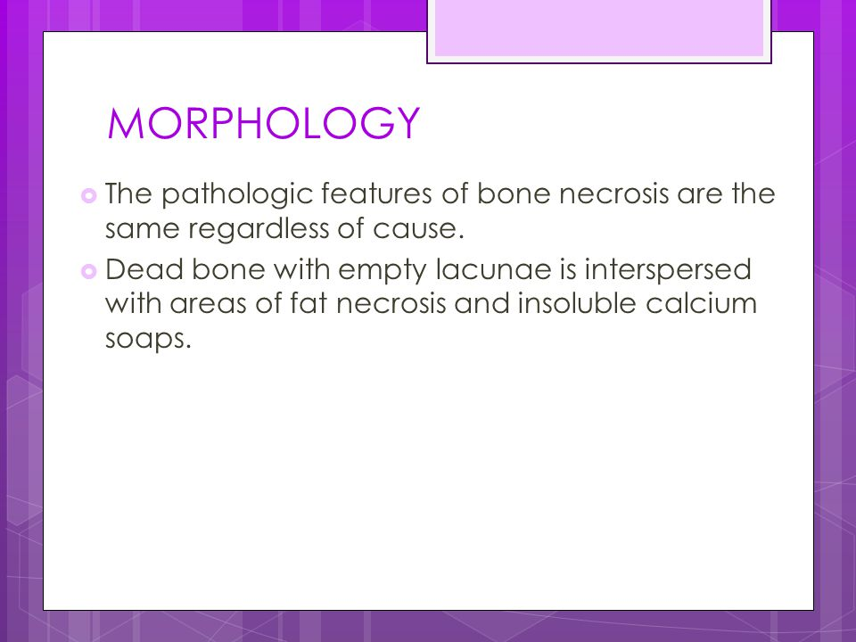 MORPHOLOGY The pathologic features of bone necrosis are the same regardless of cause.