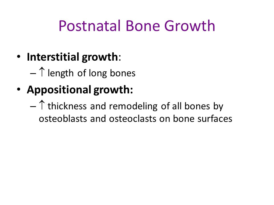 Postnatal Bone Growth Interstitial growth: Appositional growth: