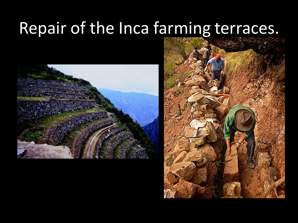 Repair of the Inca farming terraces.