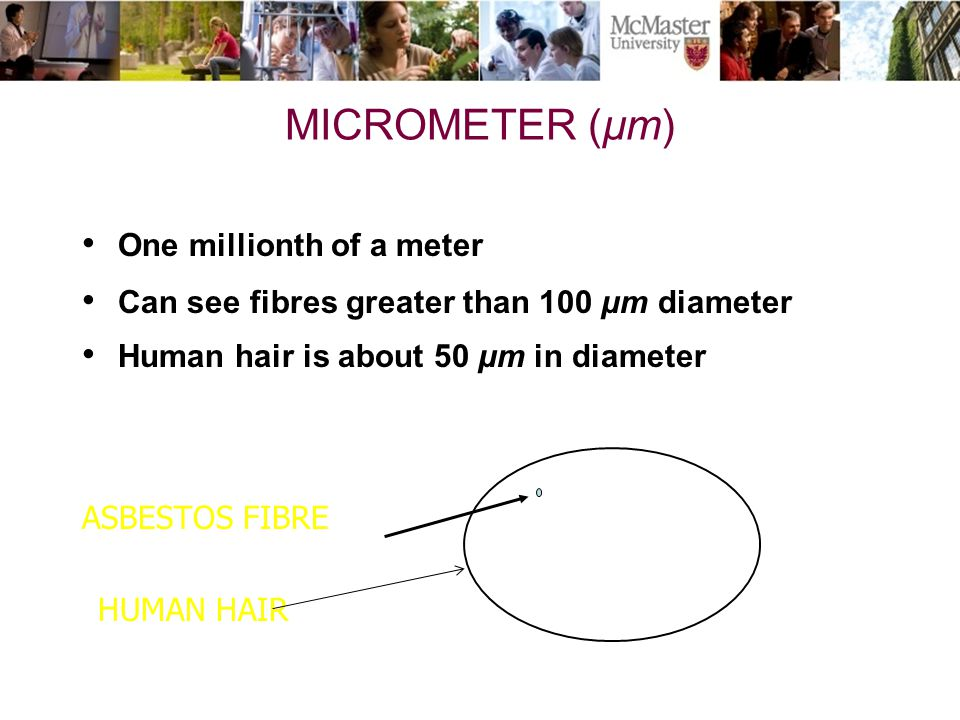 MICROMETER (µm) One millionth of a meter