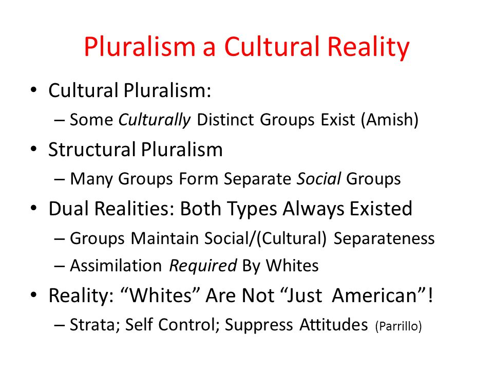 Pluralism a Cultural Reality