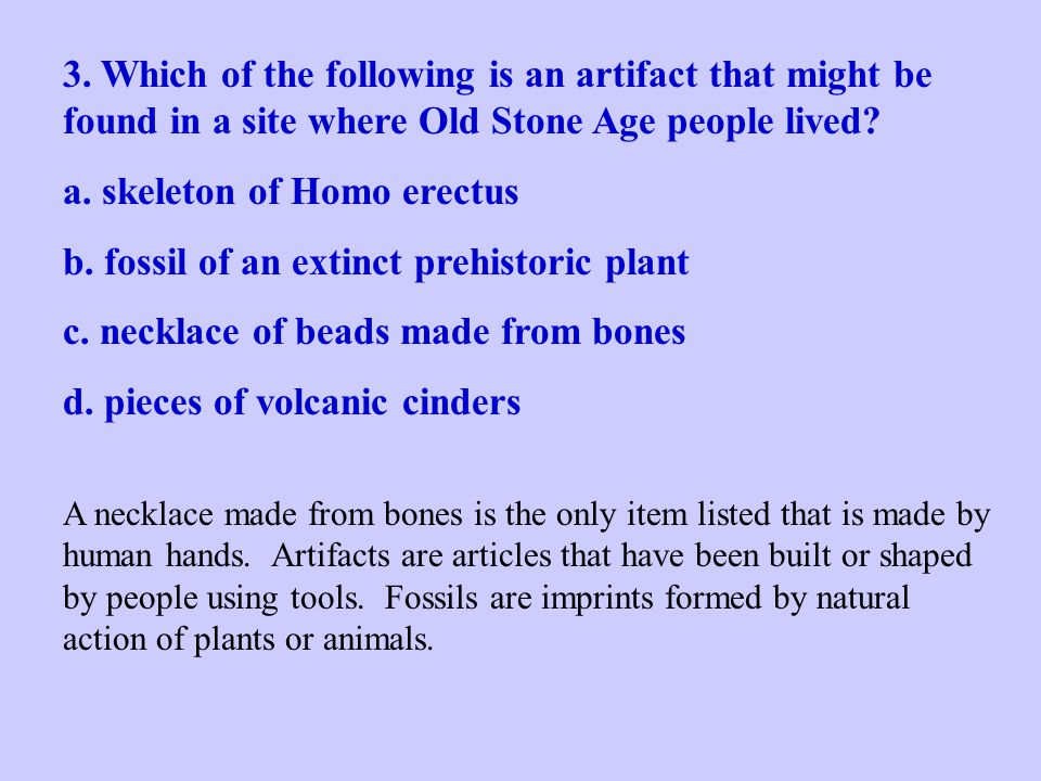 a. skeleton of Homo erectus b. fossil of an extinct prehistoric plant