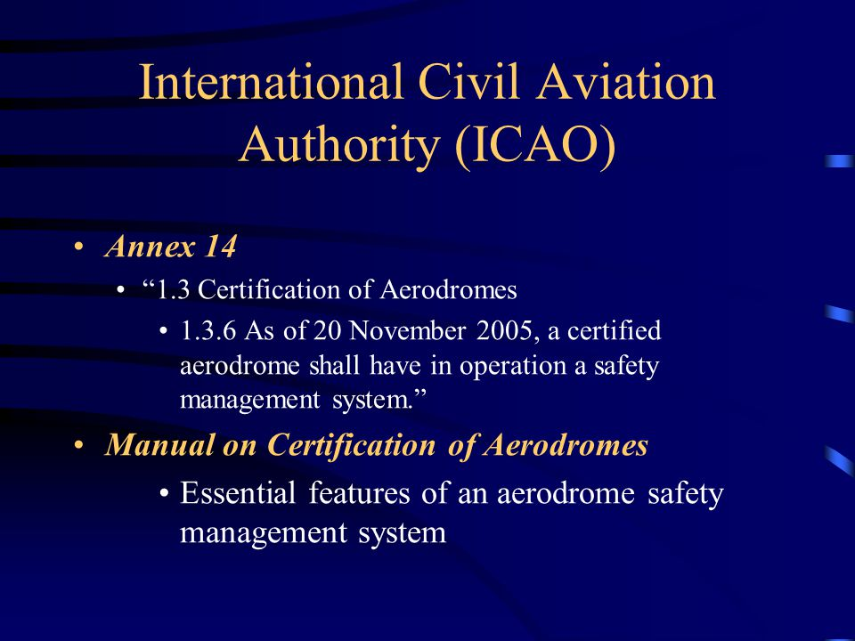 International Civil Aviation Authority (ICAO)