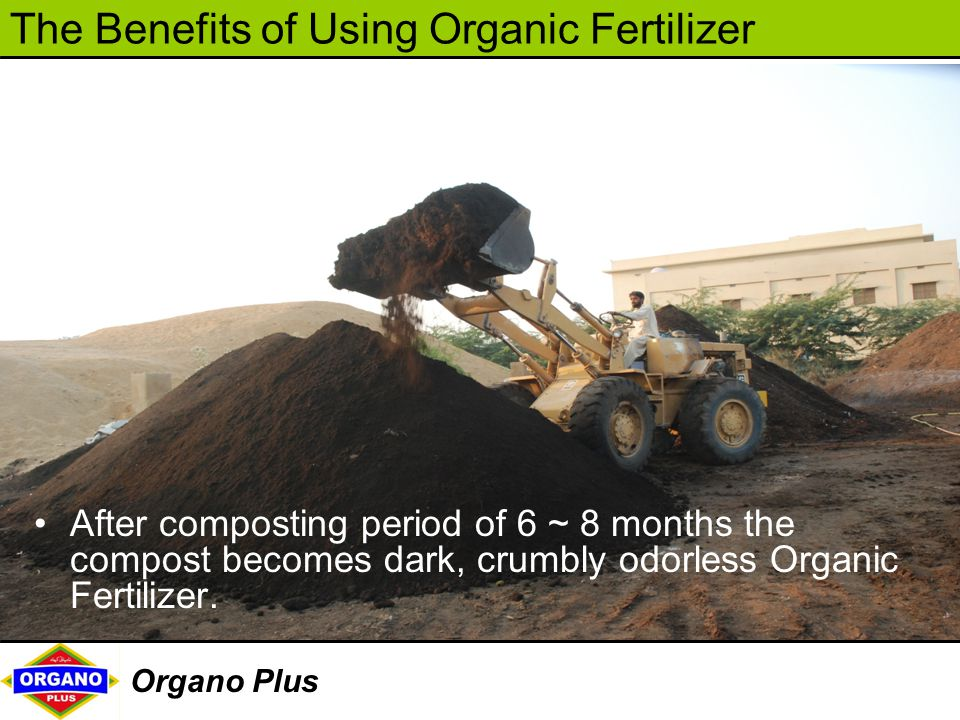 After composting period of 6 ~ 8 months the compost becomes dark, crumbly odorless Organic Fertilizer.