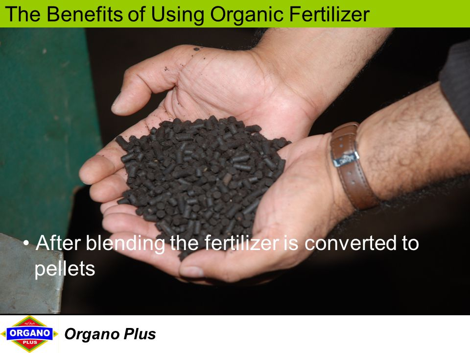 After blending the fertilizer is converted to pellets