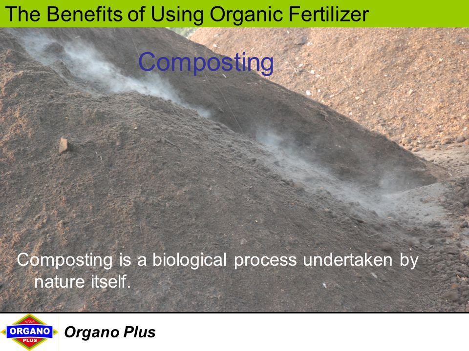 Composting Composting is a biological process undertaken by nature itself.