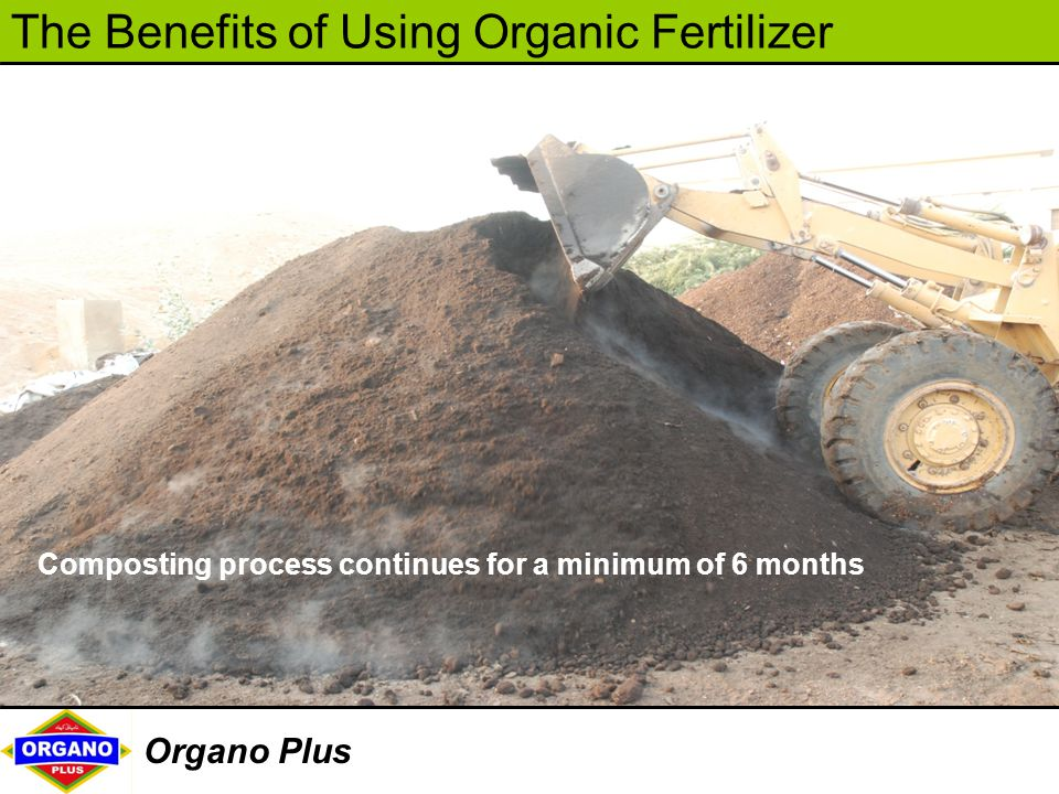 Composting process continues for a minimum of 6 months