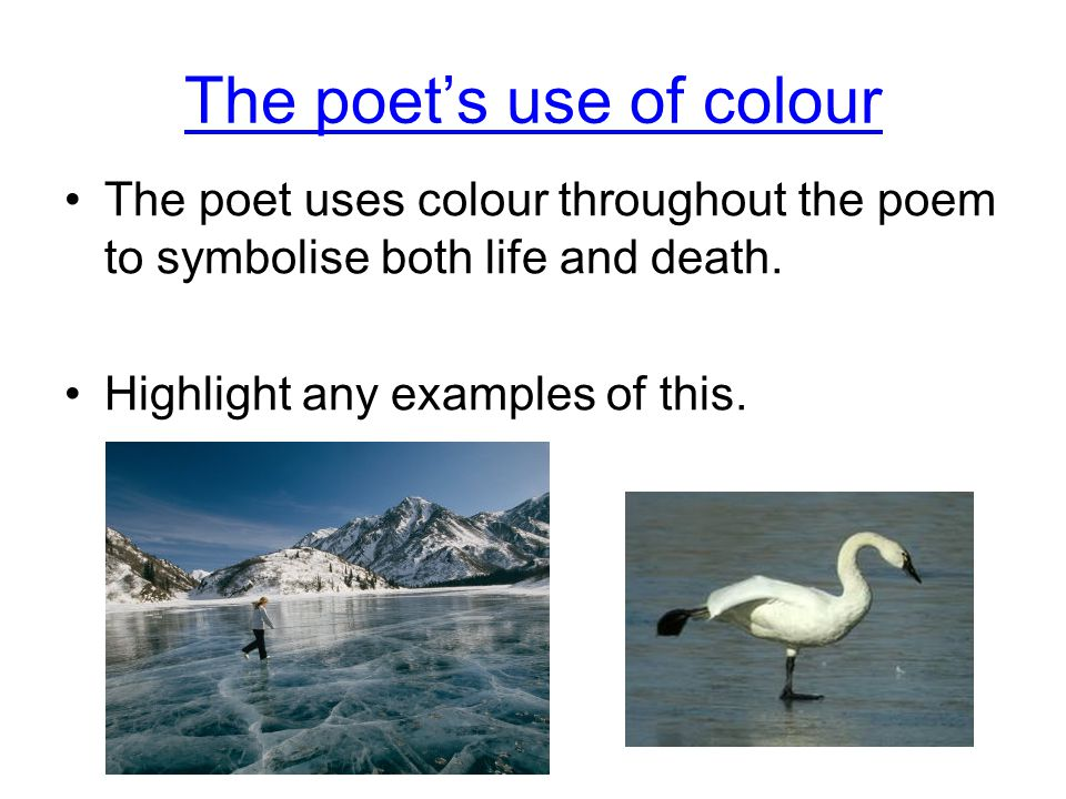 The poet's use of colour