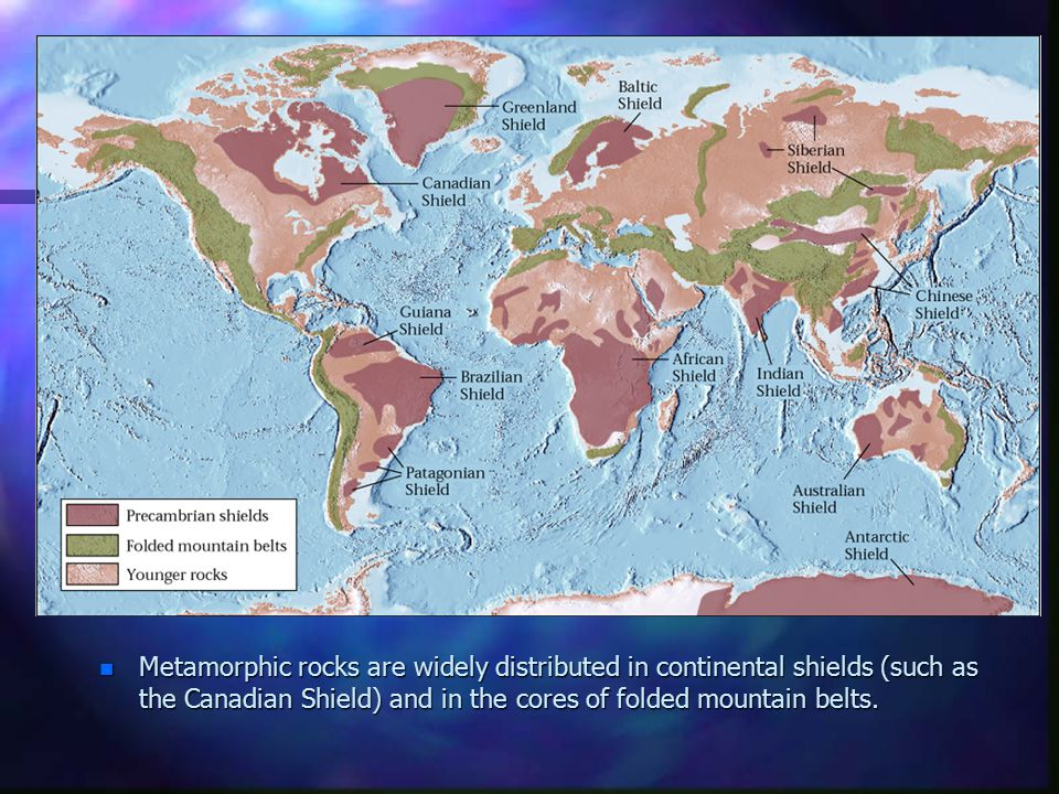 Metamorphic rocks are widely distributed in continental shields (such as the Canadian Shield) and in the cores of folded mountain belts.