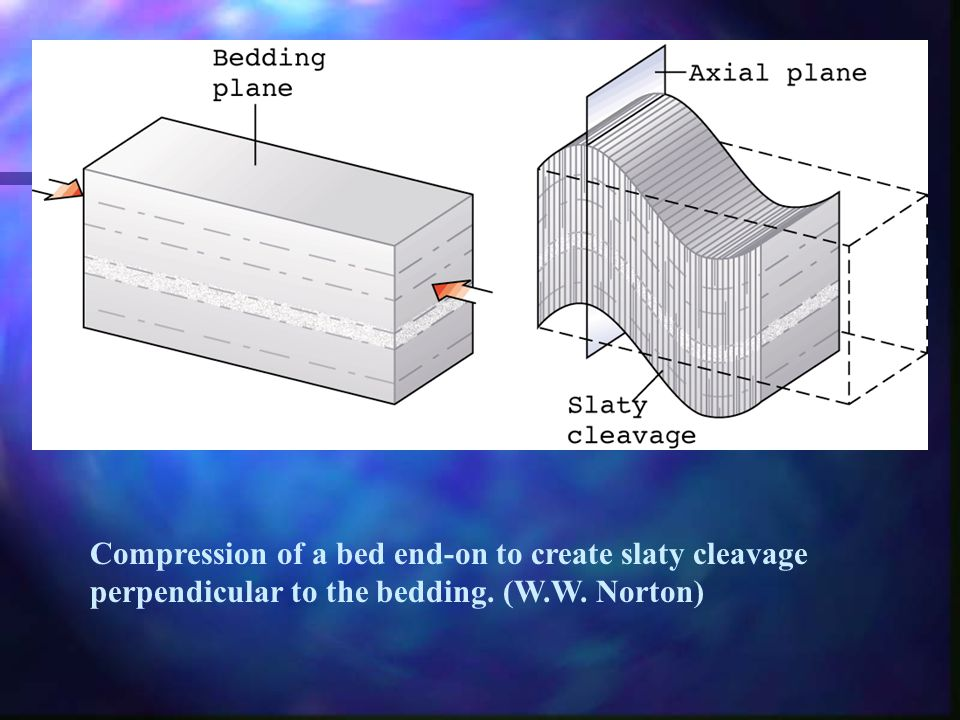 Compression of a bed end-on to create slaty cleavage perpendicular to the bedding. (W.W. Norton)