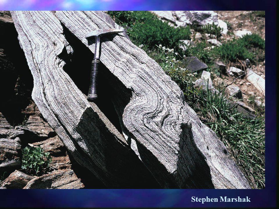 Stephen Marshak
