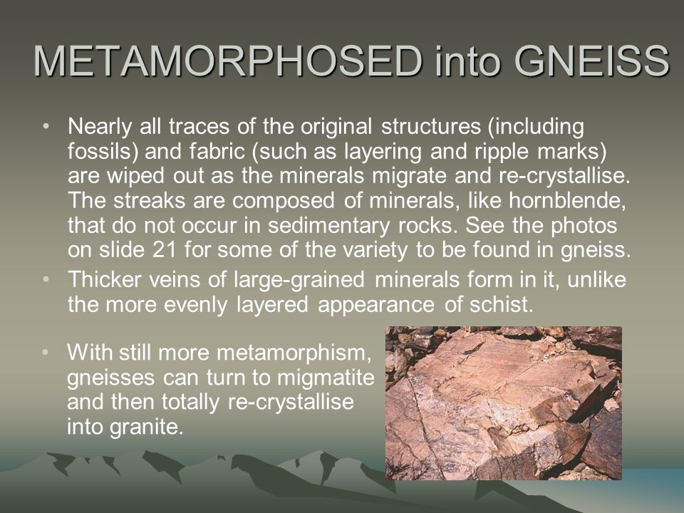 METAMORPHOSED into GNEISS