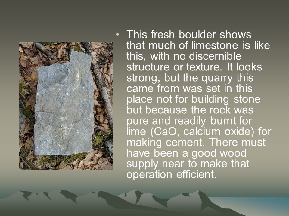 This fresh boulder shows that much of limestone is like this, with no discernible structure or texture.