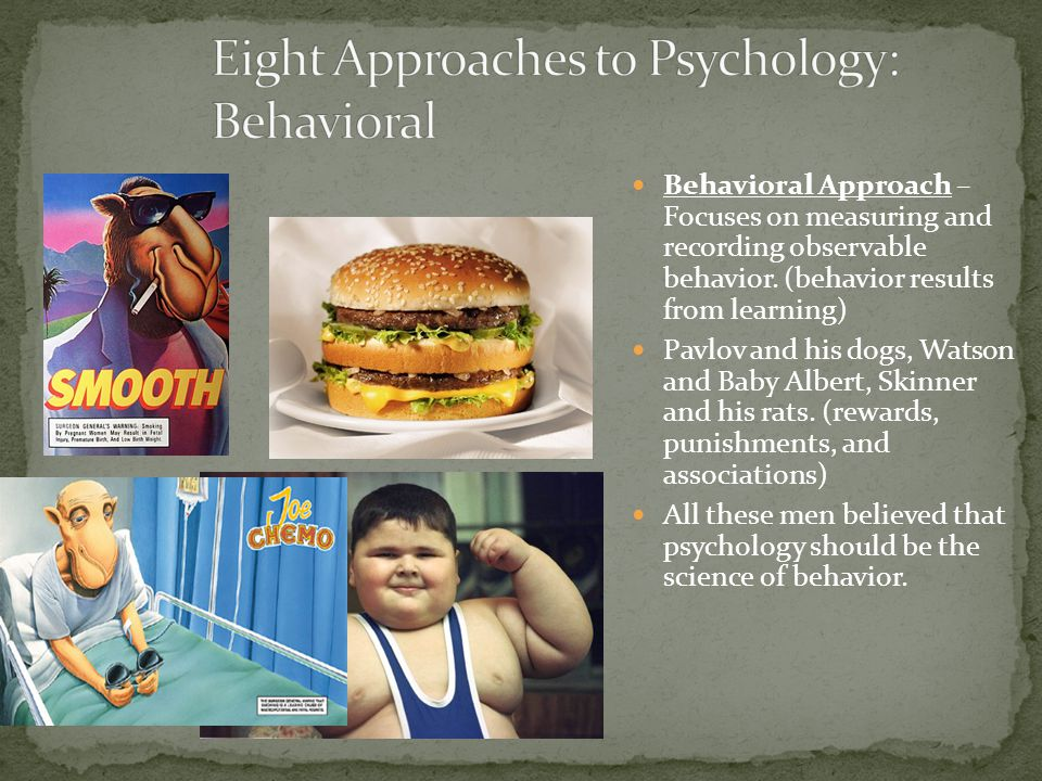 Eight Approaches to Psychology: Behavioral