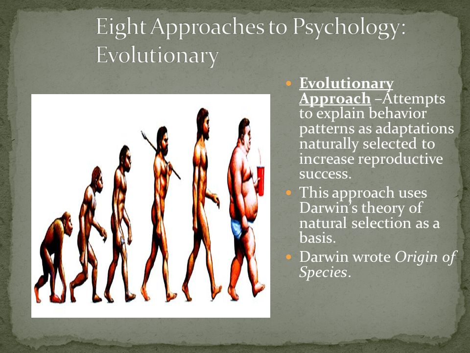 Eight Approaches to Psychology: Evolutionary
