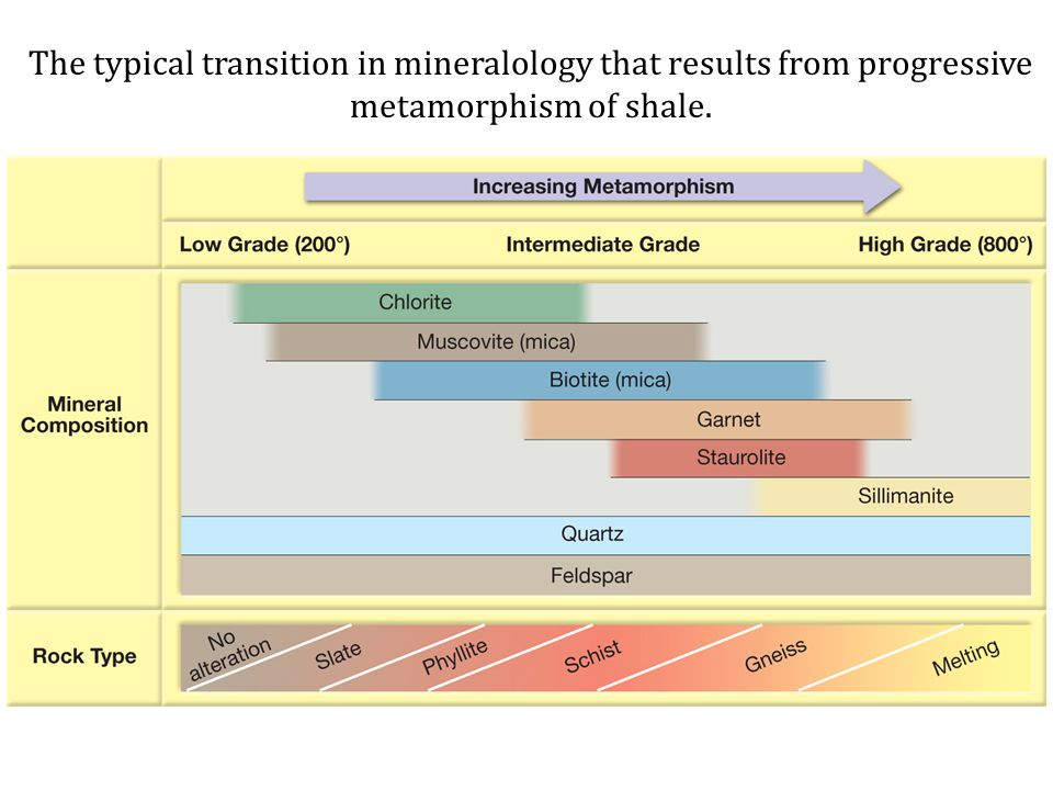 The typical transition in mineralology that results from progressive metamorphism of shale.