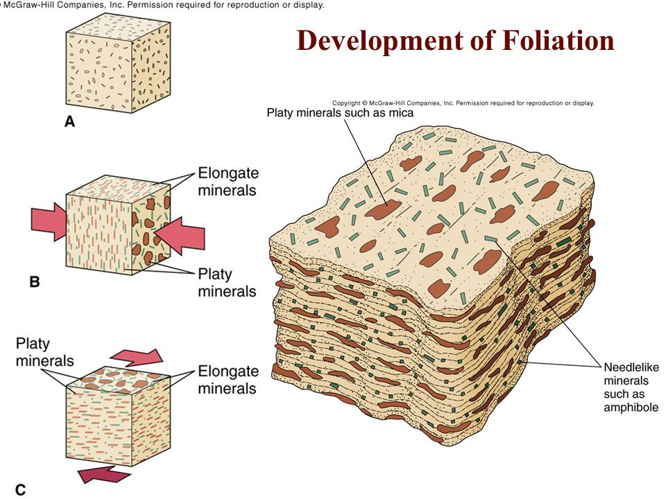 Development of Foliation