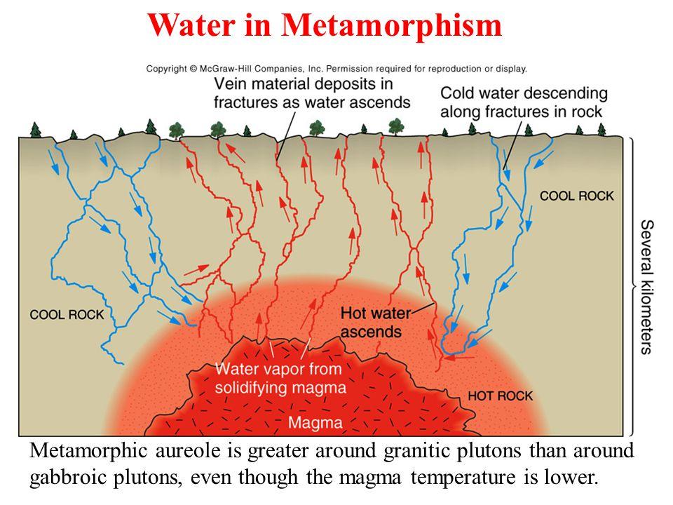 Water in Metamorphism