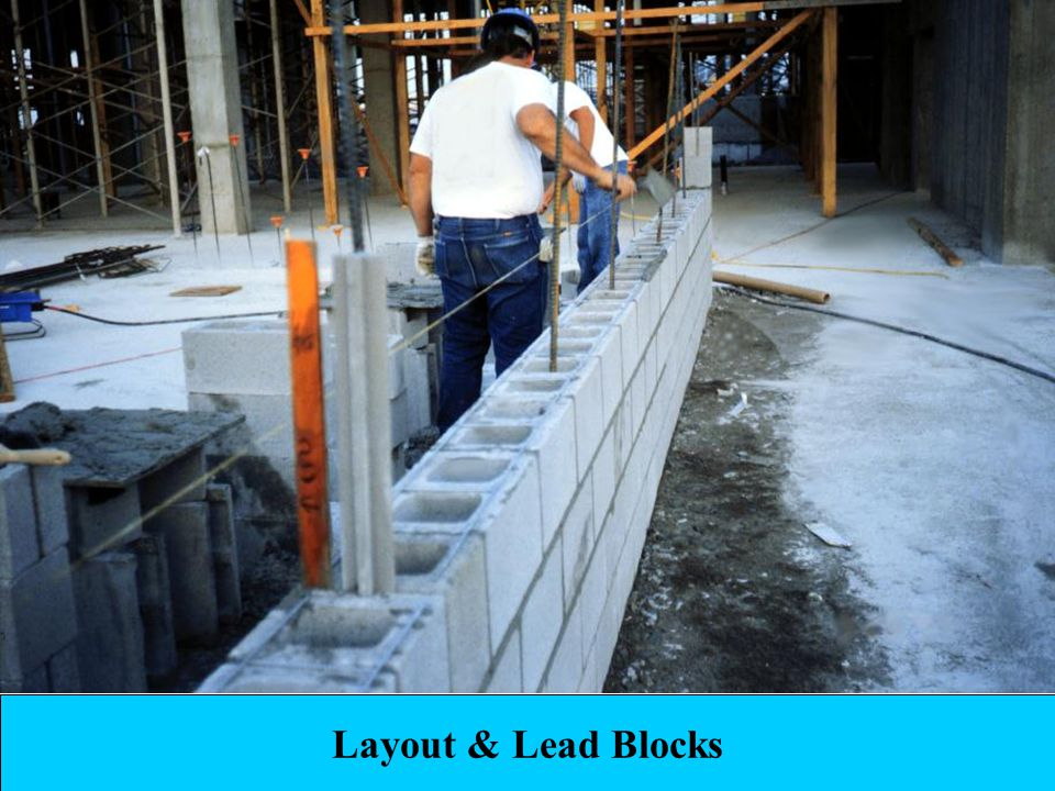 Layout & Lead Blocks