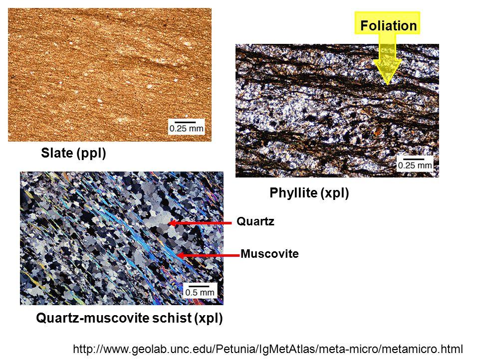 Quartz-muscovite schist (xpl)