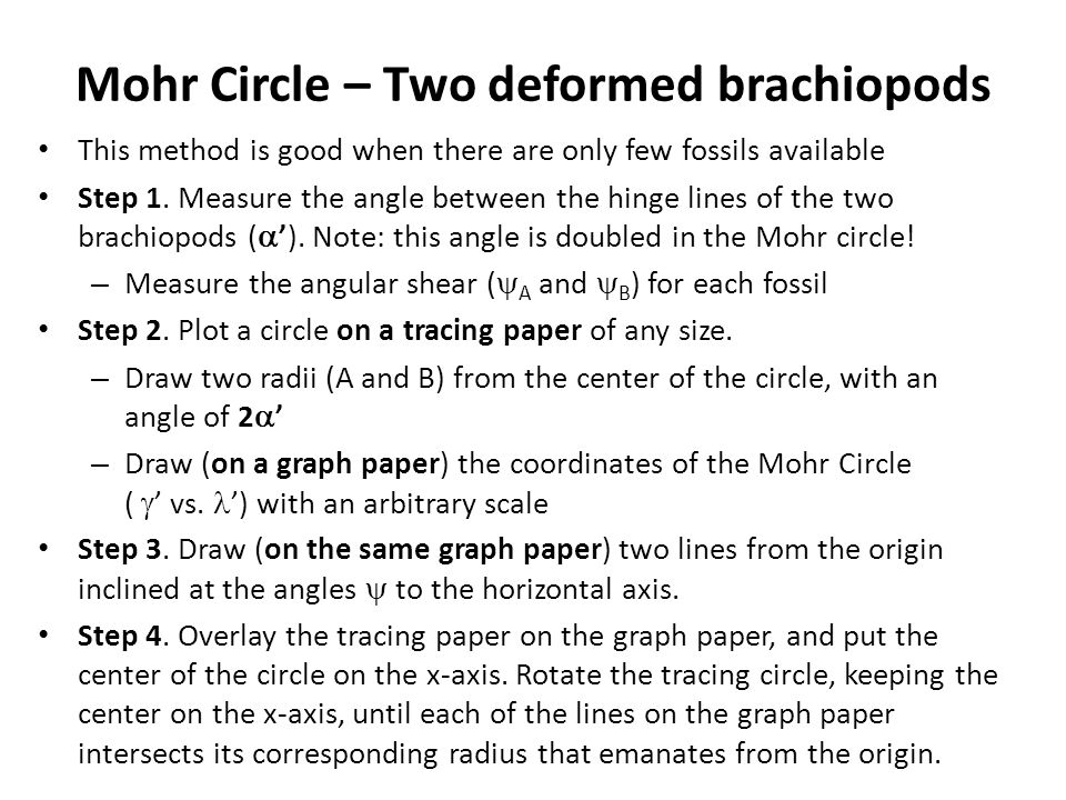 Mohr Circle – Two deformed brachiopods