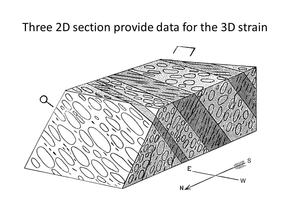 Three 2D section provide data for the 3D strain