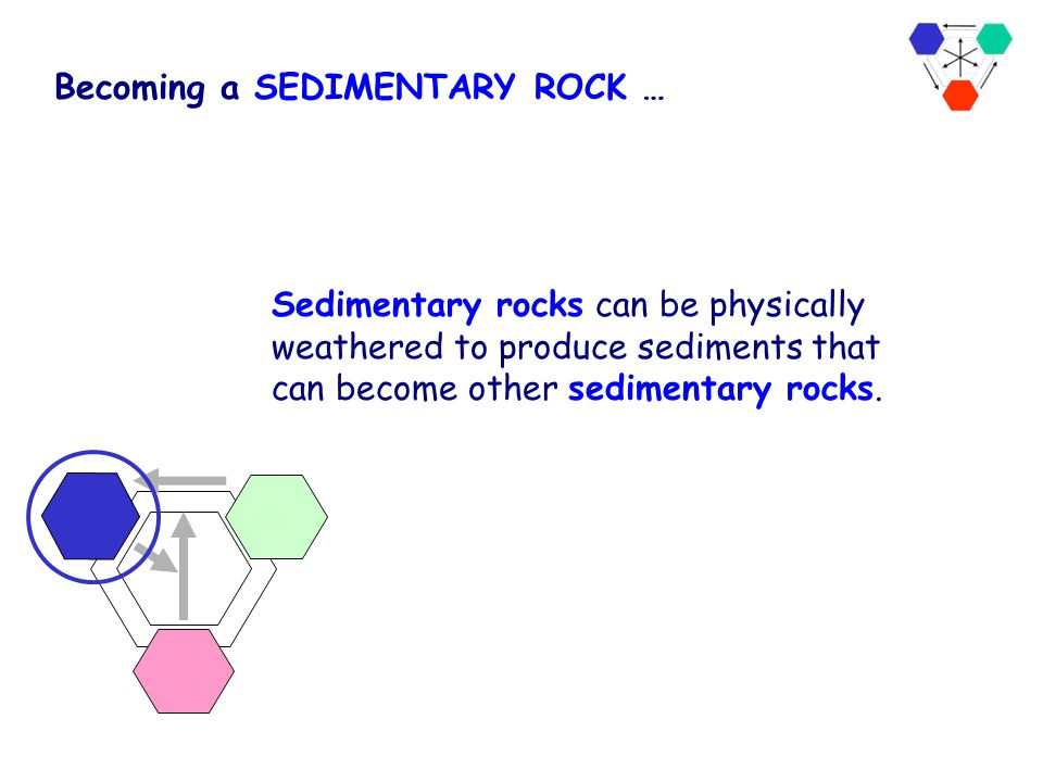 Becoming a SEDIMENTARY ROCK …