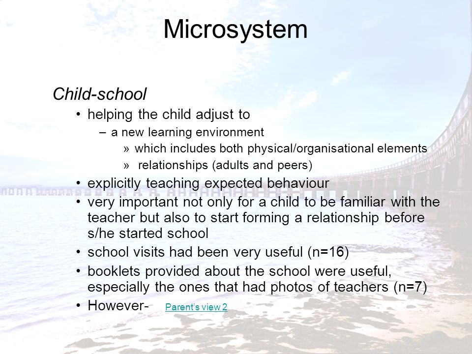 Microsystem Child-school helping the child adjust to