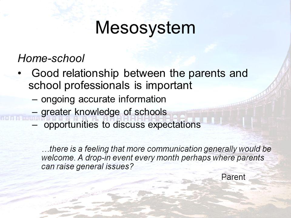 Mesosystem Home-school